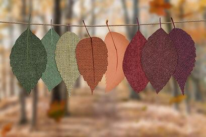 autumn-decoration-autumn-mood-forest-bright-1389460-1024x683